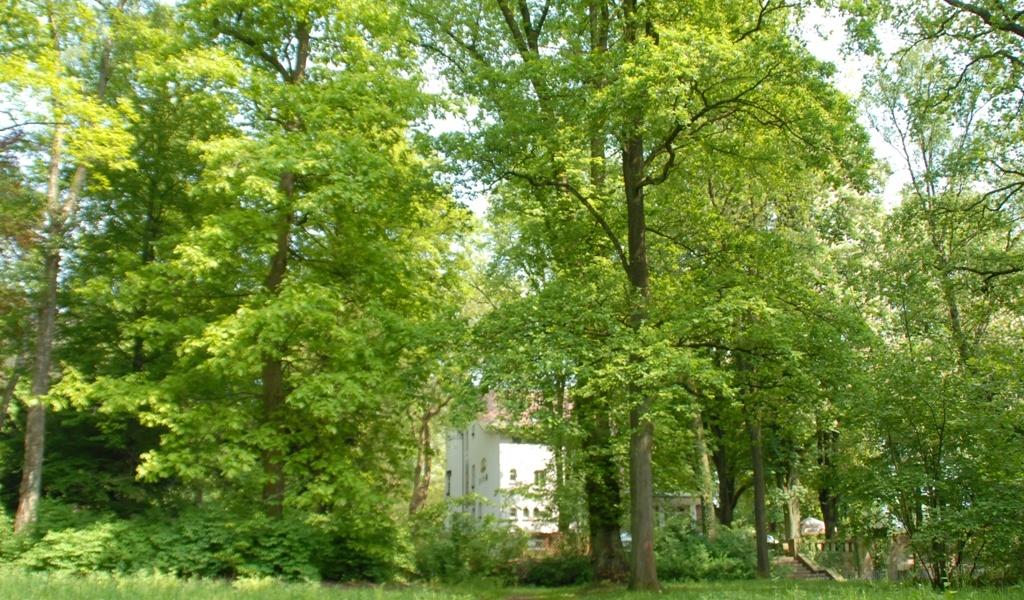 Jahreszeiten Im Engelsberger Hof 006